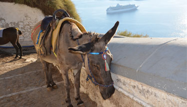A new cruise ship arrives in Santorini
